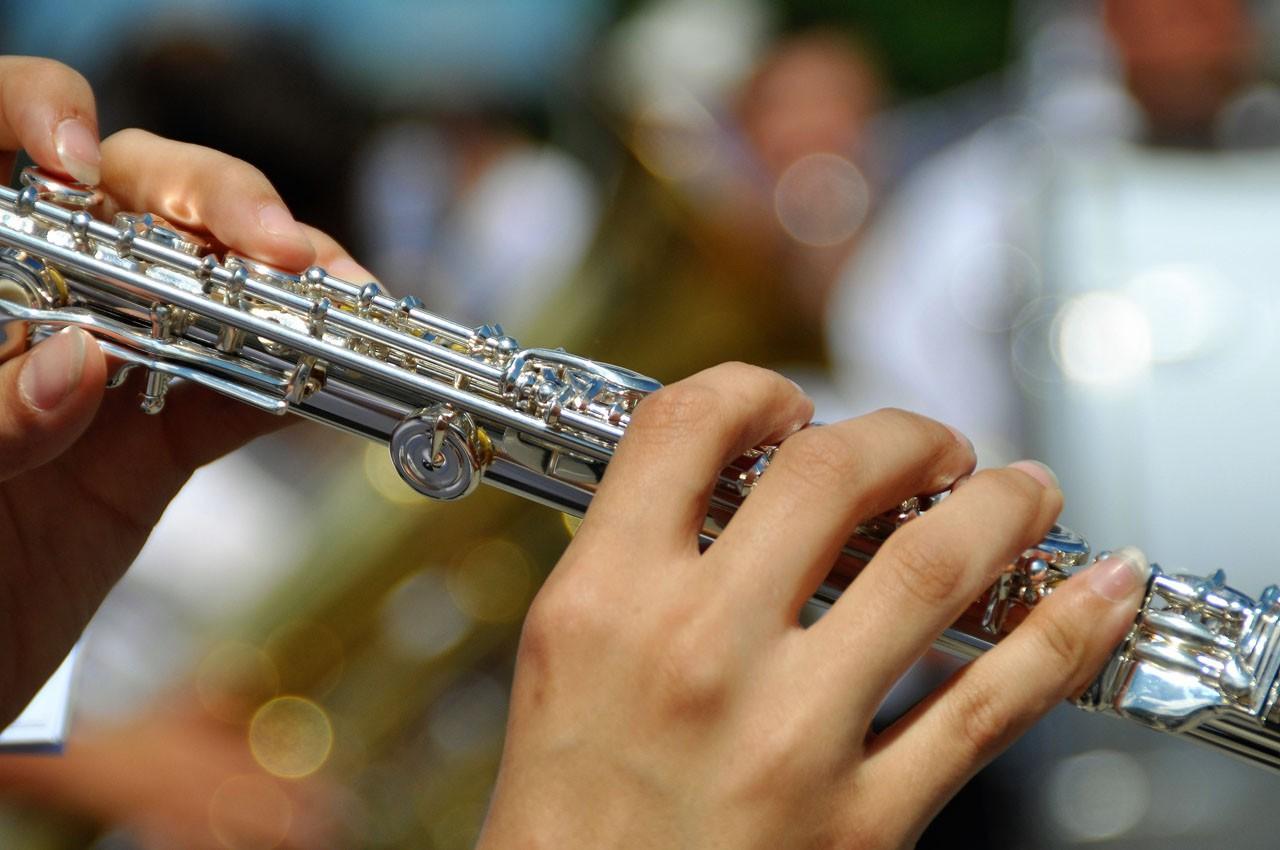 Querflöte - Blasmusik.Digital - Die Online Konferenz für Blasmusiker